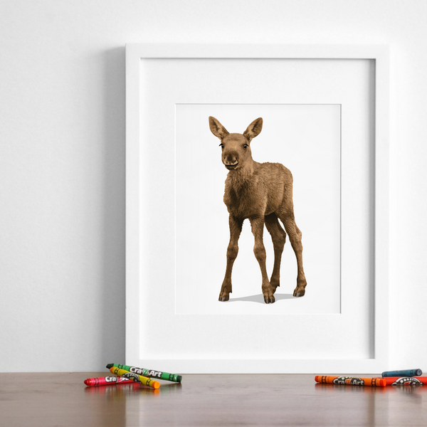 Baby Moose  - baby nursery art from Paper Llamas