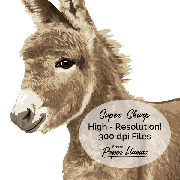 Copy of Donkey Printable  - baby nursery art from Paper Llamas