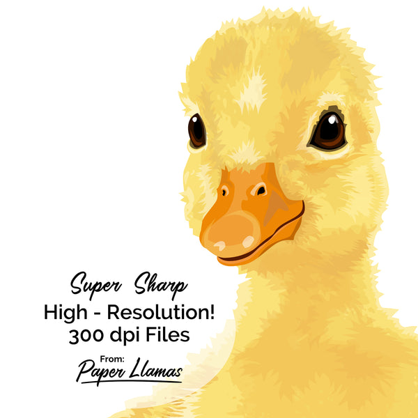 Baby Duck Printable  - baby nursery art from Paper Llamas