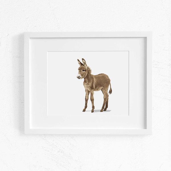Baby Donkey  - baby nursery art from Paper Llamas