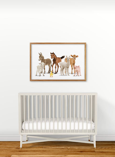 Farm Animal Parade  - baby nursery art from Paper Llamas