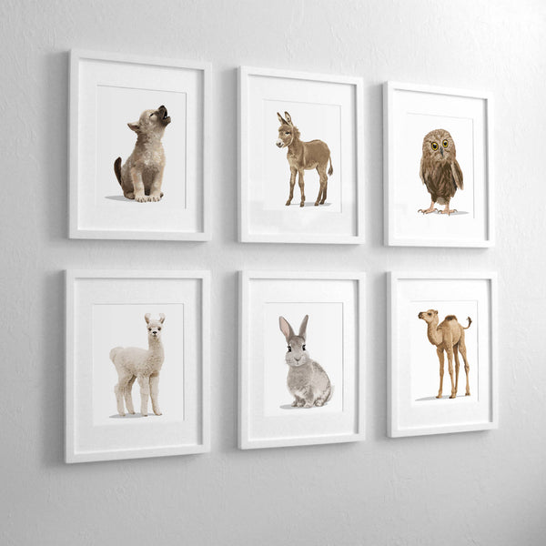 Baby Desert animal collection wolf,horse,owl,llama,bunny,camel  - baby nursery art from Paper Llamas