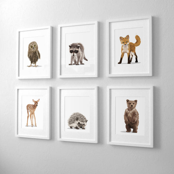 forest animal bear,hedgehog,deer, racoon,owl,fox - woodland  nursery art from Paper Llamas