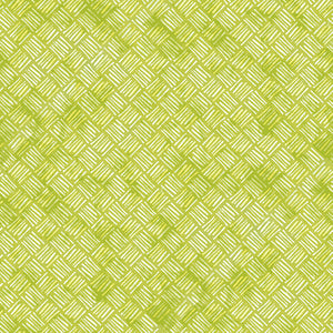 SOUL SHINE & DAYDREAMS Crosshatch lime