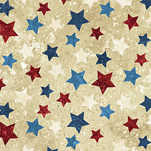 STARS AND STRIPES VII 20159-30