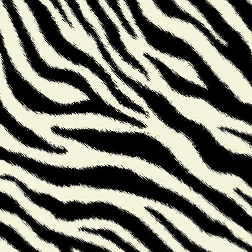EXPEDITION Zebra Skin