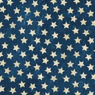 STARS AND STRIPES VII 39101-49