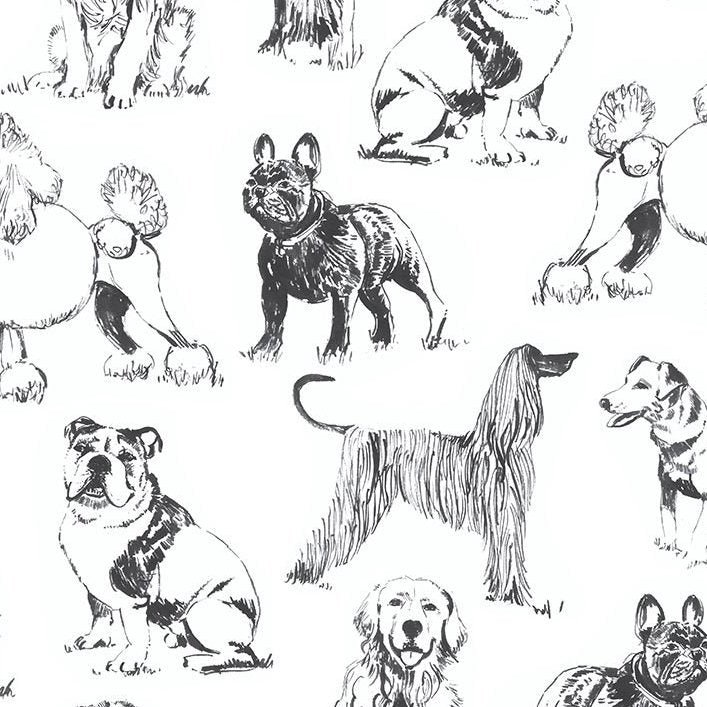 PET SKETCH Sketched Realistic Dogs white