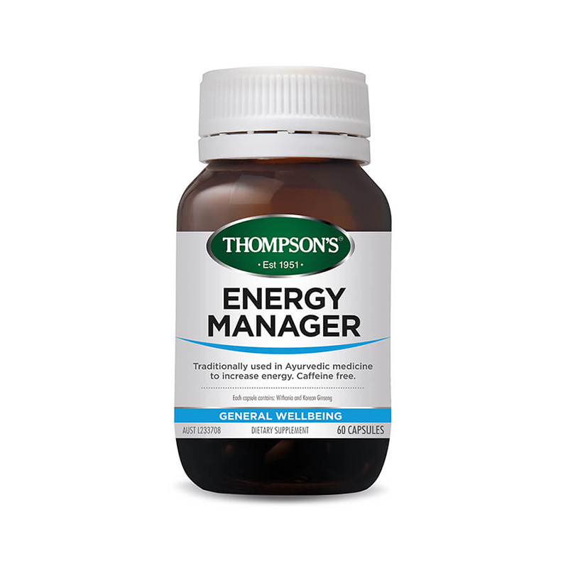 Thompson's Energy Manager