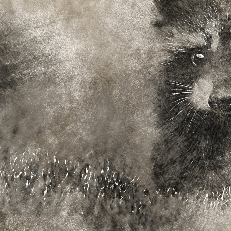 Vintage Baby Raccoon in Brushed Sepia Tone Art Print on Wood