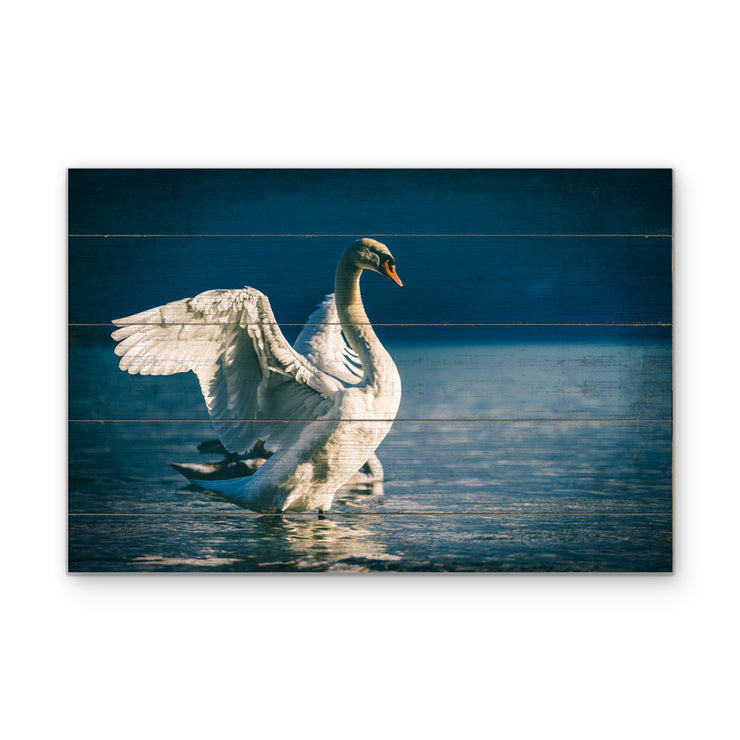 Distressed Swan Photo Print on Wood with Faux Plank Lines