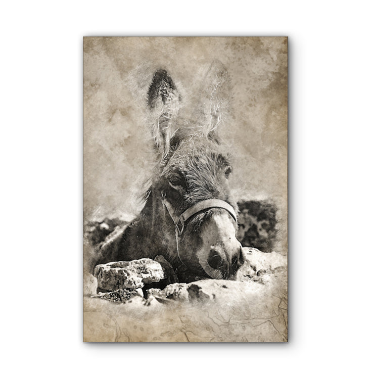 Vintage Mule Art Print on Wood
