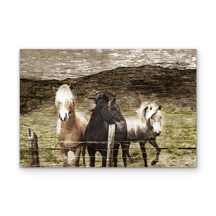 Horse Bangs Distressed Art Print on Wood