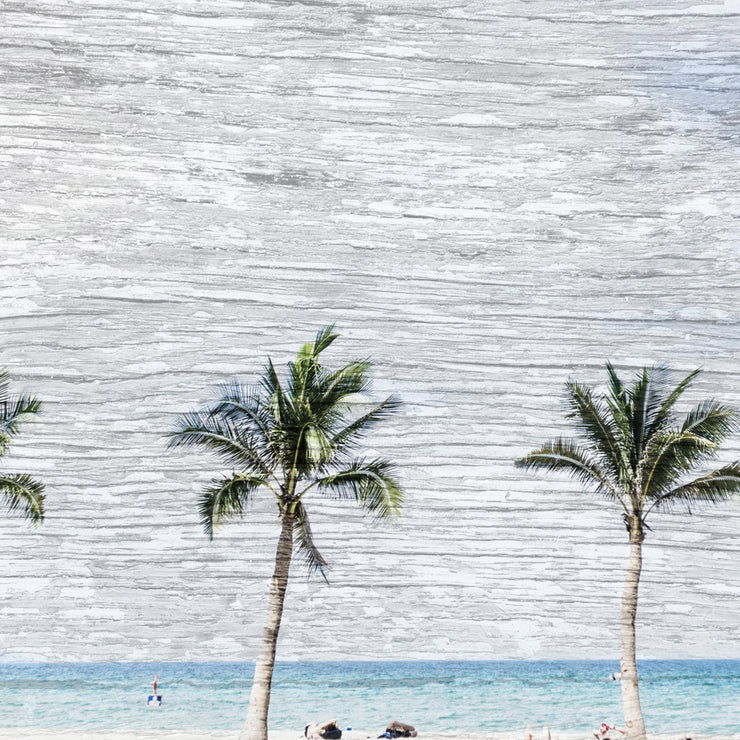 Palm Trees and Beach Art Print on Wood