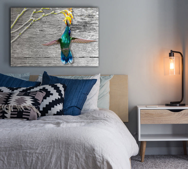 Image of  Hummingbird Feeding in Wood Grain Art Print on Wood