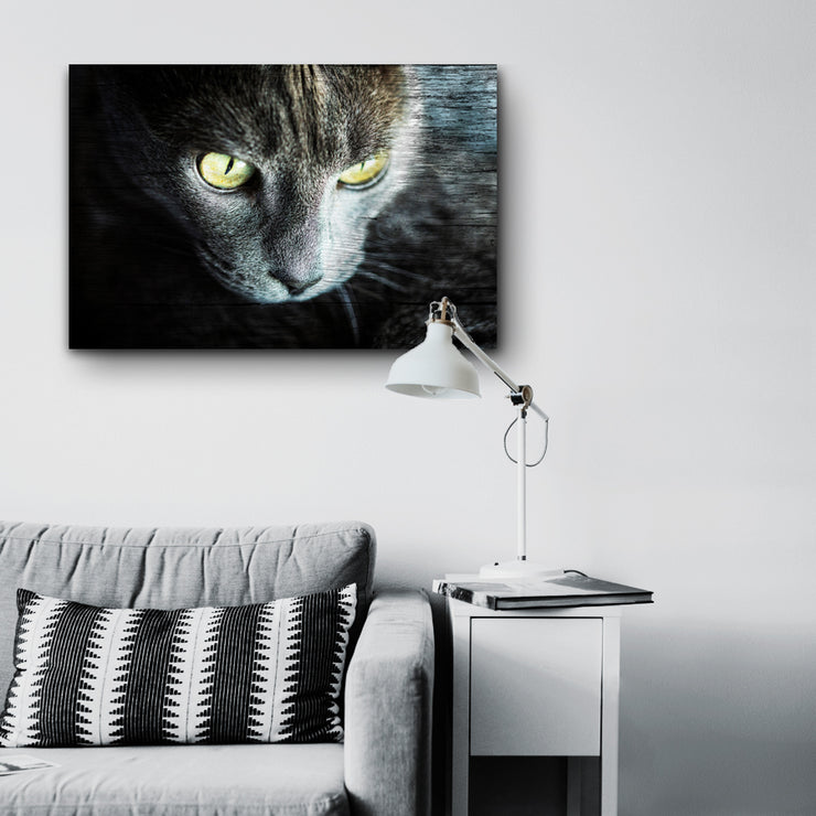Cat Eyes Photo Print on Wood