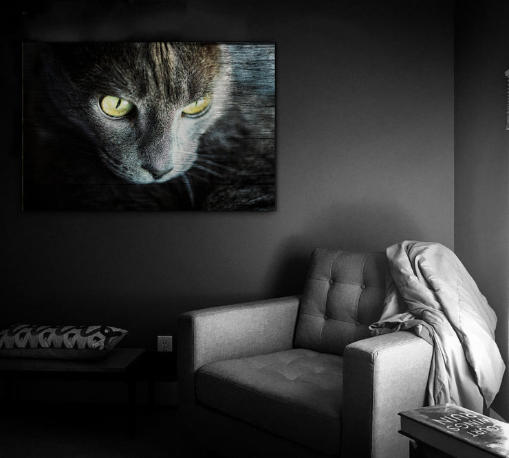 Image of  Cat Eyes Photo Print on Wood