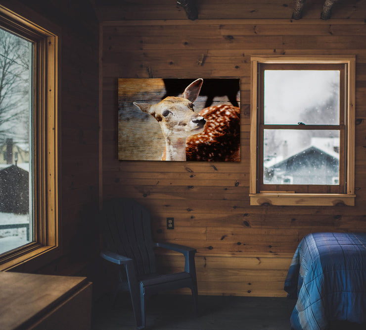 Image of  Fawn Photo Print on Wood