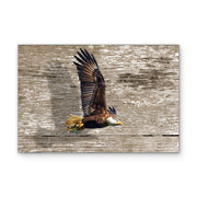 Bald Eagle Flying over Distressed Wood Art Print