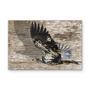 Feathered Flyover Art Print on Woodgrain