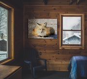 Fluffy Fox Photo Print Fused into Distressed Woodgrain