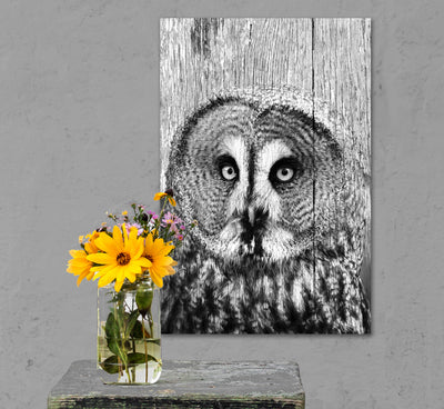 B&W Owl Photo Print Fused into Distressed Wood Grain