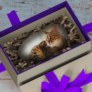 Cat Photo on Rock, Gift for Cat Lovers, Personalized Cat Gift, Pet Rock, Memorial Cat Stone, Gift for Cat Memorial, Kitty Gift, FamilyPlanks