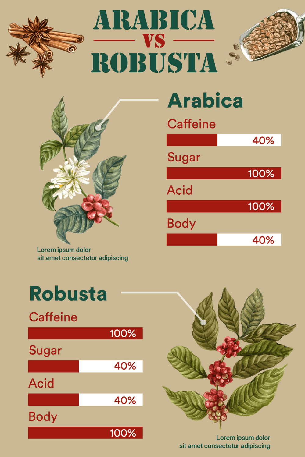 reference chart showing the differences of arabica vs robusta