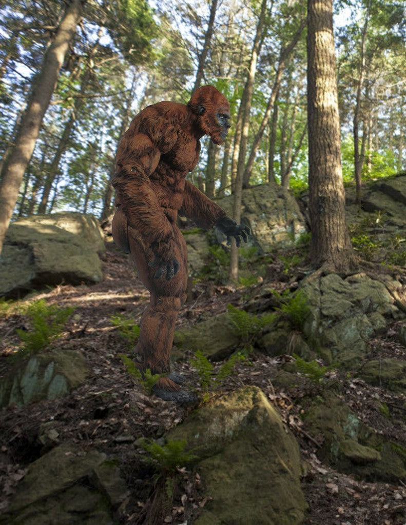 North American Sasquatch