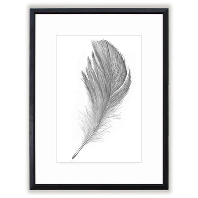 Hand Drawn Feather Matted Framed Art Print Comes In Multiple Sizes And Colors or Colored Frames