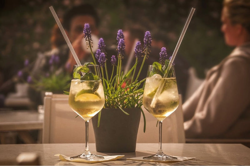 5 Spring Cocktail Recipes For Lazing in the Garden