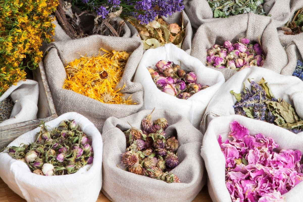 calming herbs for anxiety