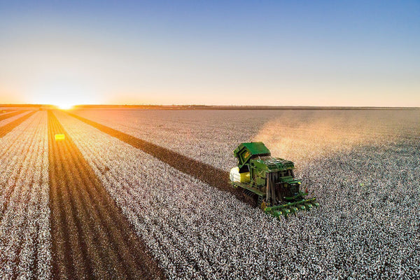 Special Event: Goondiwindi Cotton Set to Introduce Twilight Farm and Town Tours during Discover Farming