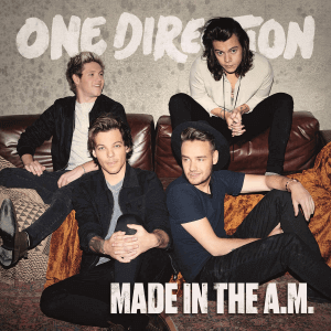 VINYL ONE DIRECTION MADE IN THE A.M. (2LP)