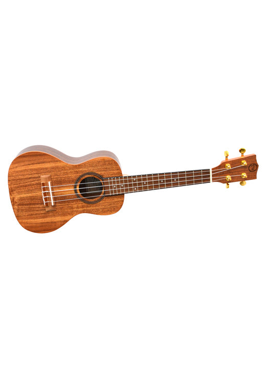 Twisted Wood Aurora Ukulele