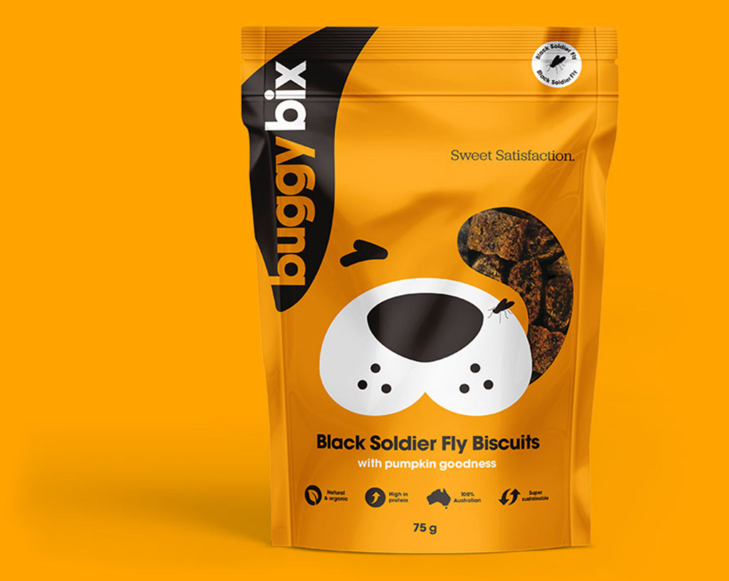 Nutritious and delicious insect treats