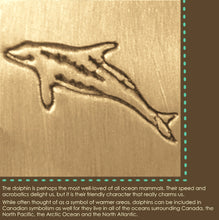 Meaning of dolphin (pacific white-sided dolphin) symbol.