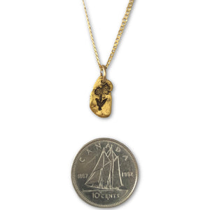 Gold nugget Arnica (northern daisy) pendant on 10 karat gold chain photo with dime to show scale.