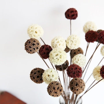Dried & Preserved Flowers -Mini  Fruit Ball