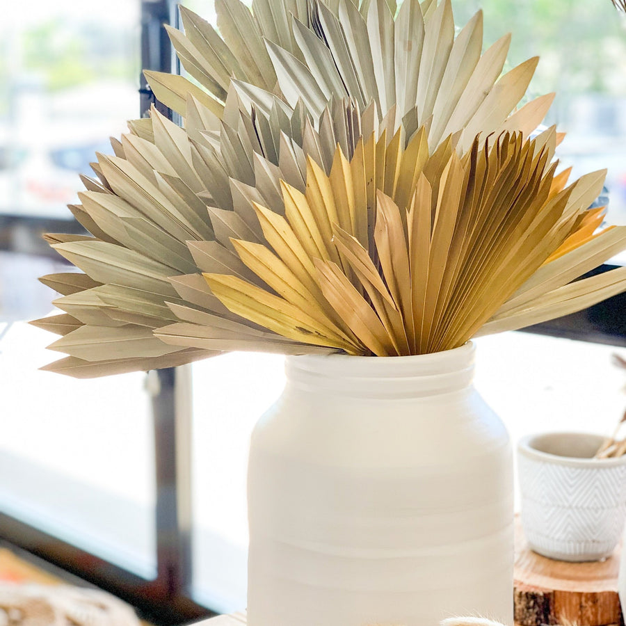 Dried & Preserved Flowers - Sun Palm Leaves