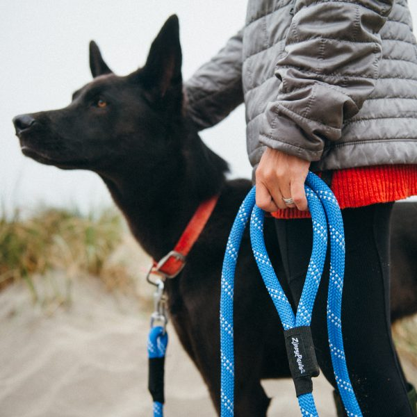 Climber's Dog Leash