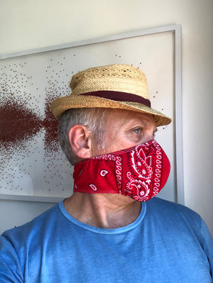 Red Bandana Print Face Mask