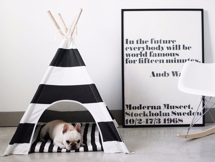 'Willow' Pet Teepee