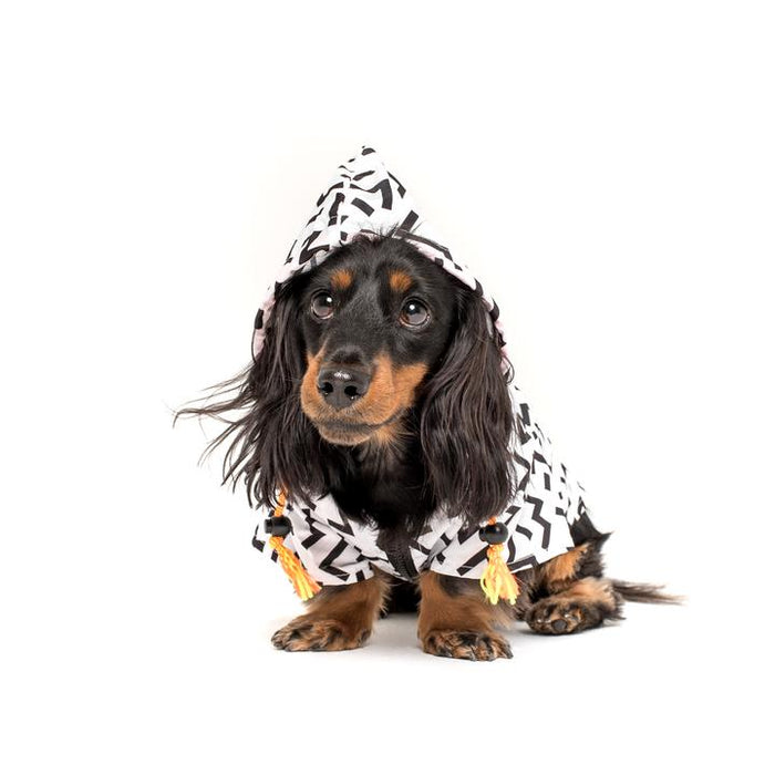 ZIGGY RAINCOAT