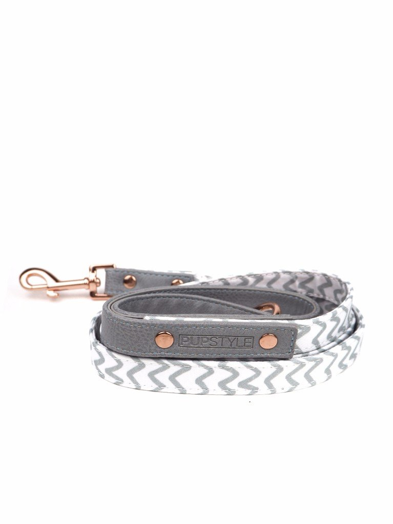 """Ziggy Pop"" City Leash"