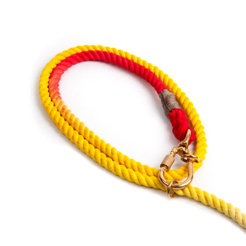 Found My Animal: Adjustable Prismatic Cotton Rope Dog Leash