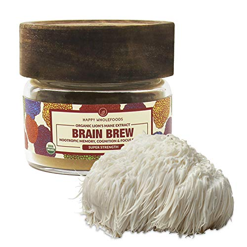 BRAIN BREW Lions Mane Mushroom Powder - Lions Mane Extract