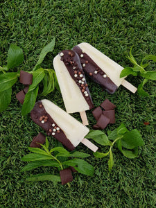 Choc Peppermint Popsicle