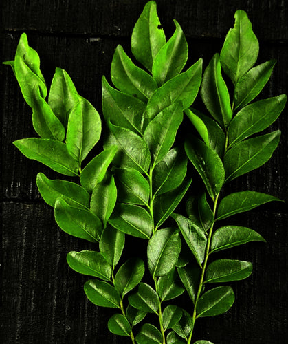 Curry Leaves (Pack)
