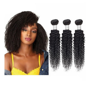 Kinky Curly Brazilian Virgin Hair Weave Bundles With 4x4 Closure